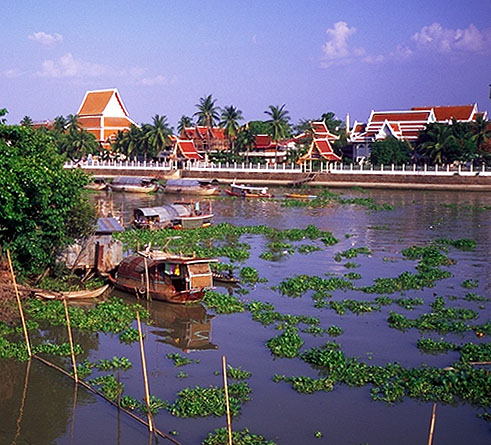 Temple across the River<br>Ayuthaya, Thailand: Ayuthaya, Thailand : Temples; Rivers.