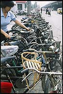 Rows of Bicycles :: Beijing, China