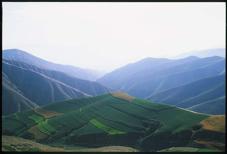 From Yong Jing to Linxia :: Gansu, China: Yongjing to Linxia, Gansu, People's Republic of China : Landscapes; Farmland.