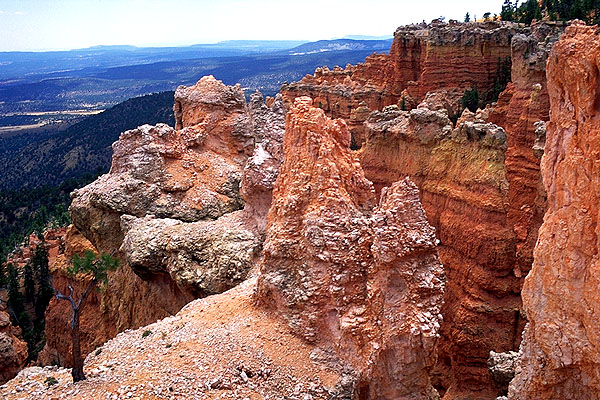 Under-the-rim-trail<br>Near the Hat Shop<br>Bryce Canyon National Park<br>Utah, USA: Bryce Canyon National Park, Utah, United States of America : Landscapes; Geological Formations.