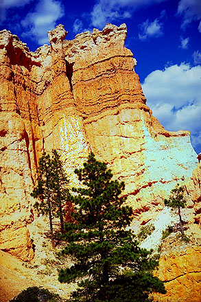 Like a Wall of Hoodoos<br>Bryce Canyon National Park<br>Utah, USA: Bryce Canyon National Park, Utah, United States of America ; Geological Formations.