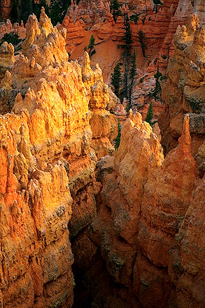 Sunset at Sunrise Point<br>A Telephoto Essay<br>Bryce Canyon National Park<br>Utah, USA: Bryce Canyon National Park, Utah, United States of America : Sunsets; Geological Formations.