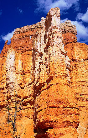 A Walk Under-the-Rim<br>With the Hoodoos<br>Bryce Canyon National Park<br>Utah, USA: Bryce Canyon National Park, Utah, United States of America ; Geological Formations.