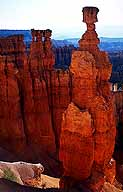 Thor's Hammer :: Sunset Point :: Bryce Canyon National Park :: Utah, USA