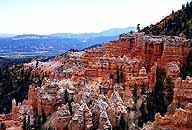Under-the-rim-trail :: Near the Hat Shop :: Bryce Canyon National Park :: Utah, USA