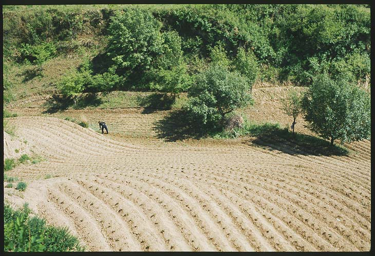 A Farmer's Life :: Chengde, Hebei Province: Chengde, Hebei, People's Republic of China : Landscapes.