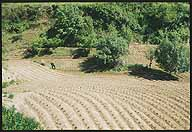 A Farmer's Life :: Chengde, Hebei Province