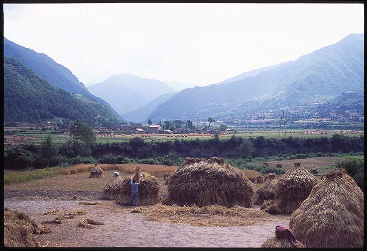 Farmland Nestled in the Valley: Xiahe to Linxia, Gansu, People's Republic of China : Landscapes; Farmland.
