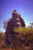 Termite Mound :: Gregory Highway :: Queensland, Australia