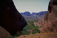Kata Tjuta (The Olgas) :: Northern Territory, Australia