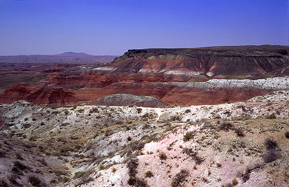 Bluffs Edging<br>the Painted Desert<br>Petrified Forest National Park, Arizona: Petrified Forest National Monument, Arizona, United States of America : Geological Formations; Landscapes.