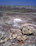 Bluffs at the Edge :: of the Painted Desert :: Petrified Forest National Park, Arizona