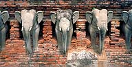 The Atlas Elephants :: Sukhothai, Thailand