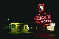 The Palomino Motel :: Tucumcari, New Mexico