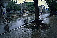 Bicycles :: Hanoi, Vietnam