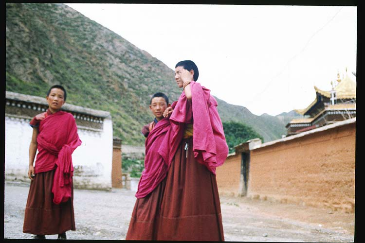 Photo of young monks<br>and taken by a young monk.: Xiahe -- Labrang Si, Gansu, People's Republic of China : People You Meet.