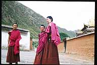 Photo of young monks :: and taken by a young monk.