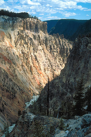 The Grand Canyon of the Yellowstone<br>Yellowstone National Park<br>Wyoming, USA: Yellowstone National Park, Wyoming, United States of America : Canyons; Rivers.