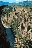 Hoodoos before The Narrows :: Yellowstone National Park :: Wyoming, USA