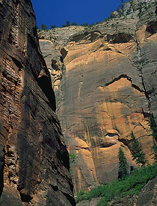 The Narrows<br>Zion National Park<br>Utah, USA: Zion National Park, Utah, United States of America : Rivers; Canyons.