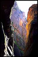 The Narrows :: Zion National Park :: Utah, USA