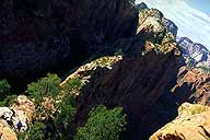 Descending :: Angel's Landing Trail :: Zion National Park :: Utah, USA