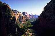Southerly View down Zion Canyon :: Angel's Landing Trail :: Zion National Park :: Utah, USA