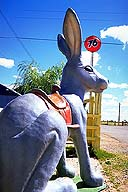 The Jackrabbit :: Joseph City, Arizona